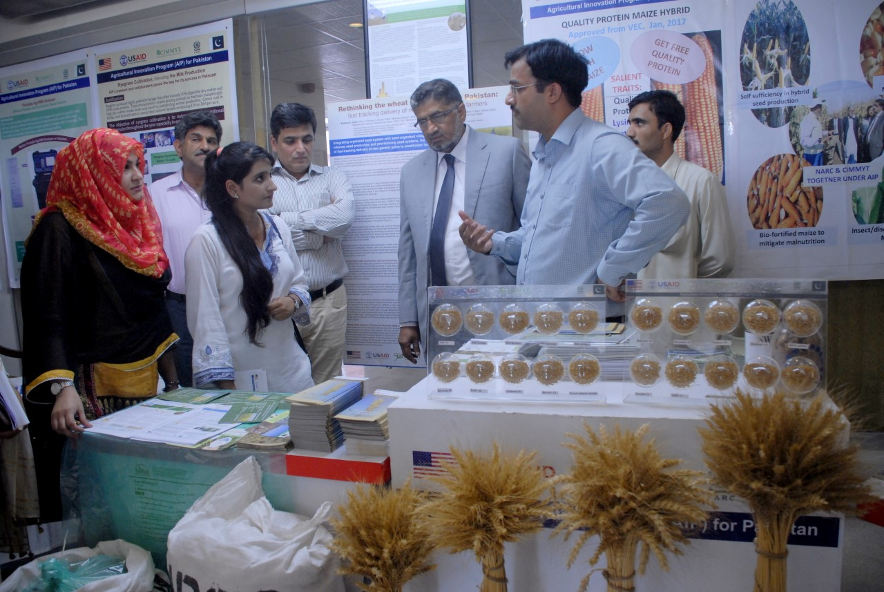 Director General National Agriculture Research Centre (NARC) Dr. Azeem Khan getting briefed by USAID funded Agriculture Innovation Program team.